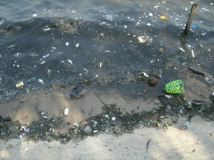 Pollution in Guanabara Bay
